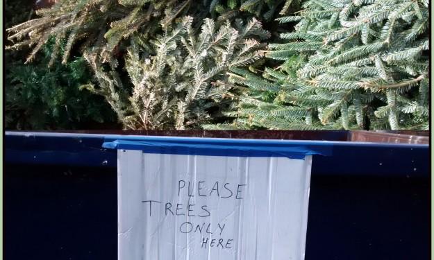 елка помойка