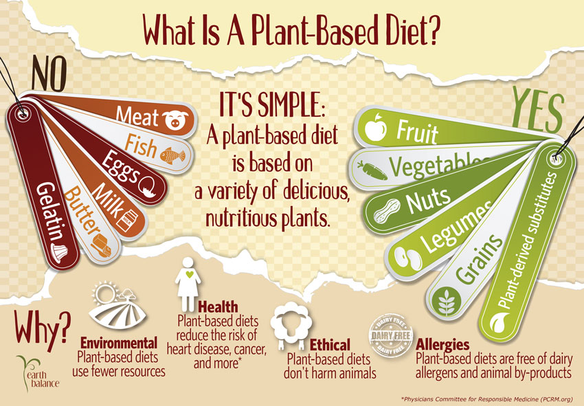 how plant based diets are healthier than meat based diets