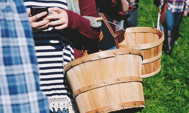 basket-1246553_1280